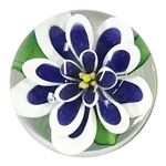 "Bernadette Gerbe - ""Blue and White Flower Marble"""