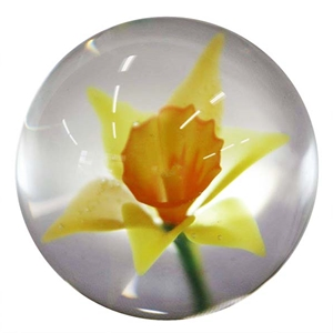 "Fred Linders - ""Daffodil Marble"""